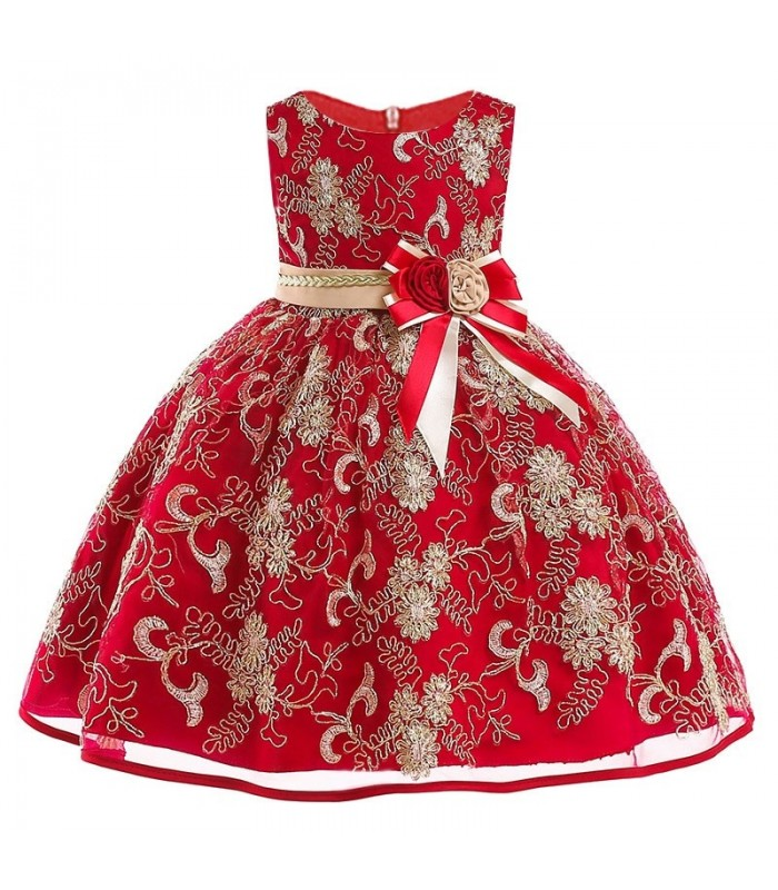 Red stylish organza dress with golden embroidery